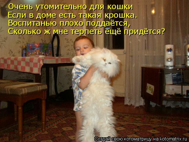 Очень утомительно для кошки Если в доме есть такая крошка. Воспитанью плохо поддаётся, Сколько ж мне терпеть ещё придётся?