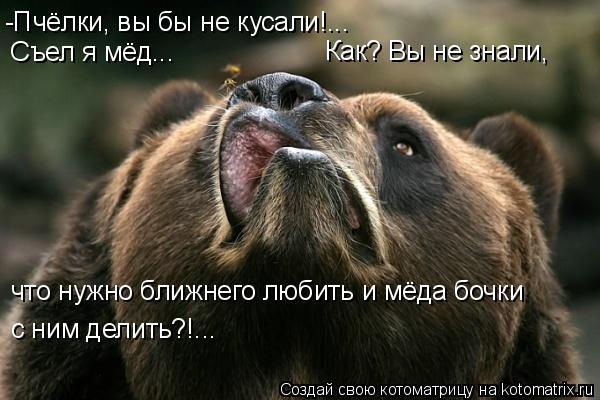 Котоматрица: -Пчёлки, вы бы не кусали!... Съел я мёд... Как? Вы не знали, что нужно ближнего любить и мёда бочки с ним делить?!...