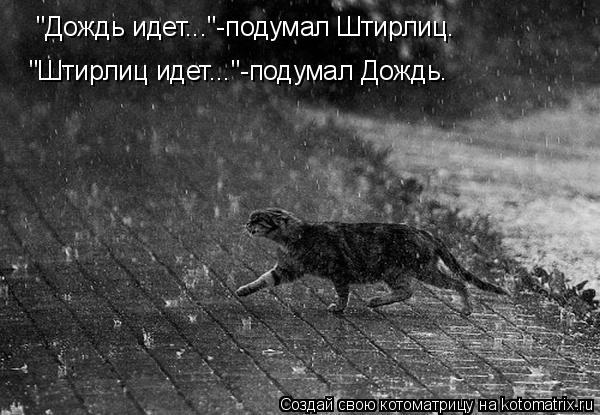 """Котоматрица: """"Дождь идет...""""-подумал Штирлиц. """"Штирлиц идет...""""-подумал Дождь."""