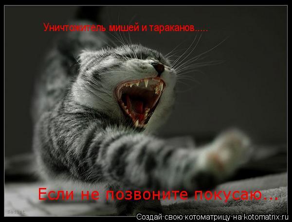 Котоматрица: Если не позвоните покусаю... Уничтожитель мишей и тараканов.....