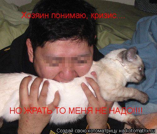 Котоматрица: Хозяин понимаю, кризис.... НО ЖРАТЬ ТО МЕНЯ НЕ НАДО!!!!