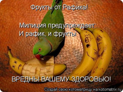 Котоматрица: Фрукты от Рафика! Милиция предупреждает: И рафик, и фрукты ВРЕДНЫ ВАШЕМУ ЗДОРОВЬЮ!