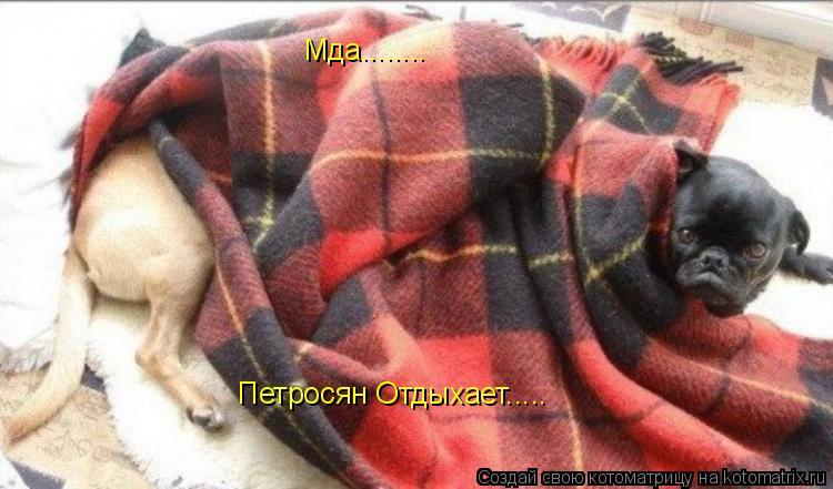 Котоматрица: Мда........ Петросян Отдыхает.....