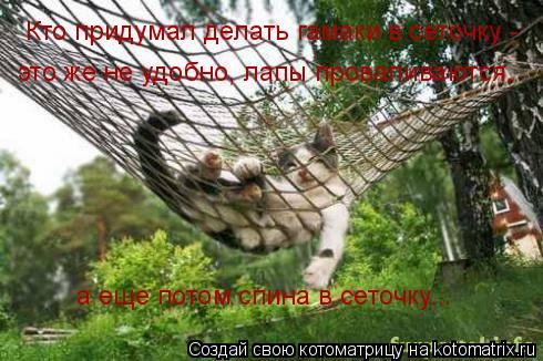 Котоматрица: Кто придумал делать гамаки в сеточку -  это же не удобно, лапы проваливаются,  а еще потом спина в сеточку...