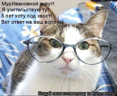 Котоматрица: МурИвановной зовут! Я учительствую тут. 8 лет коту под хвост! - Вот ответ на ваш вопрос!