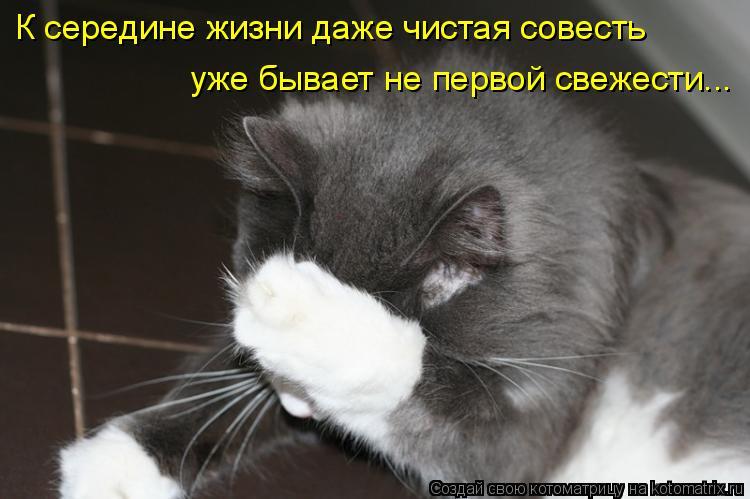 Котоматрица: К середине жизни даже чистая совесть уже бывает не первой свежести...