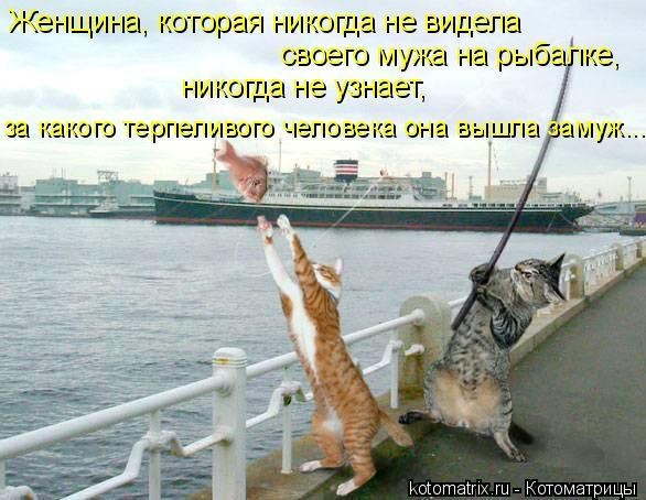 Котоматрица: Женщина, которая никогда не видела своего мужа на рыбалке, никогда не узнает, за какого терпеливого человека она вышла замуж...