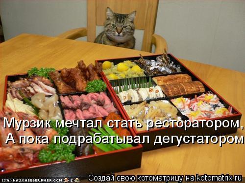 Котоматрица: Мурзик мечтал стать ресторатором, А пока подрабатывал дегустатором.