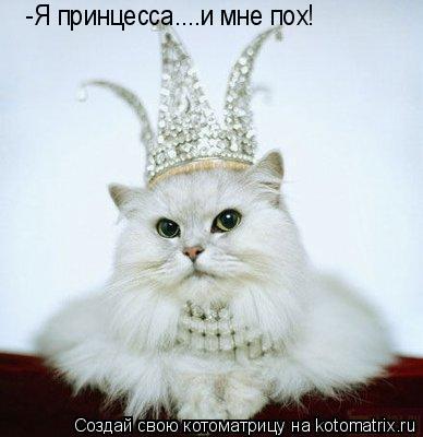 Котоматрица: -Я принцесса....и мне пох!