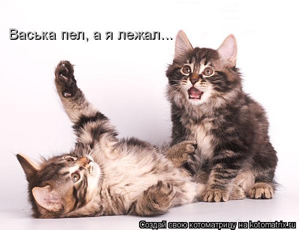 Котоматрица: Васька пел, а я лежал...