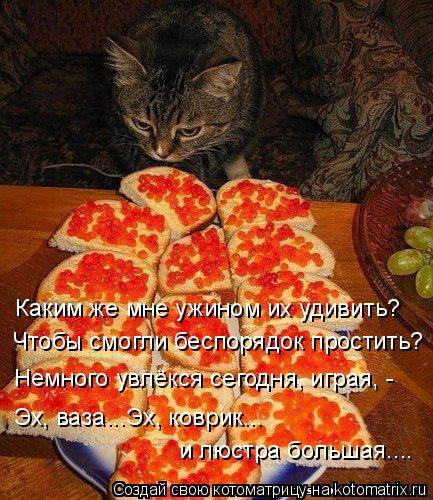Котоматрица: Каким же мне ужином их удивить? Чтобы смогли беспорядок простить? Немного увлёкся сегодня, играя, - Эх, ваза...Эх, коврик... и люстра большая....