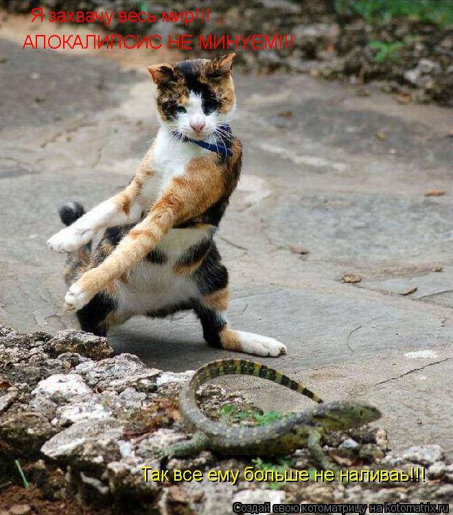 Котоматрица: Я захвачу весь мир!!!  АПОКАЛИПСИС НЕ МИНУЕМ!!! Так все ему больше не наливаь!!!