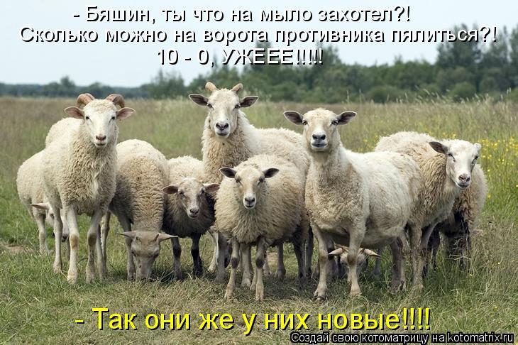Котоматрица: - Бяшин, ты что на мыло захотел?! Сколько можно на ворота противника пялиться?! 10 - 0, УЖЕЕЕ!!!!! - Так они же у них новые!!!!