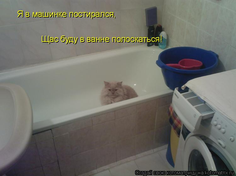 Котоматрица: Я в машинке постирался, Щас буду в ванне полоскаться!