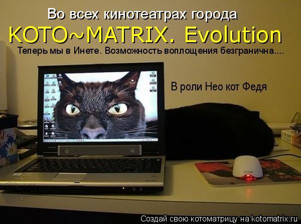 Котоматрица: Во всех кинотеатрах города KOTO~MATRIX. Evolution В роли Нео кот Федя Теперь мы в Инете. Возможность воплощения безгранична....