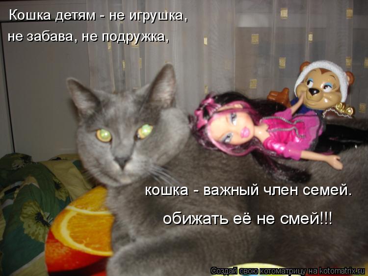 Котоматрица: Кошка детям - не игрушка, не забава, не подружка, кошка - важный член семей. обижать её не смей!!!