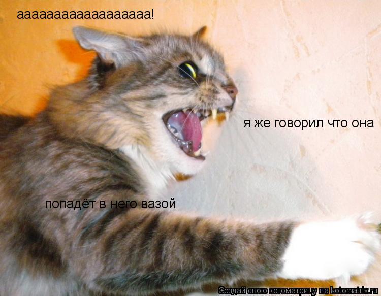 Котоматрица: аааааааааааааааааа!  я же говорил что она попадёт в него вазой