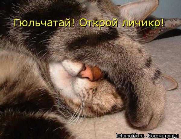 Котоматрица: Гюльчатай! Открой личико!