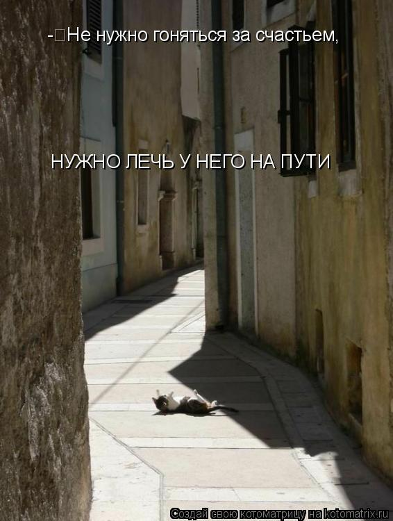 Котоматрица: -Не нужно гоняться за счастьем,  НУЖНО ЛЕЧЬ У НЕГО НА ПУТИ