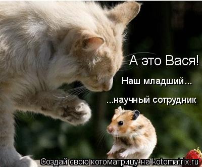 Котоматрица: А это Вася! Наш младший... ...научный сотрудник