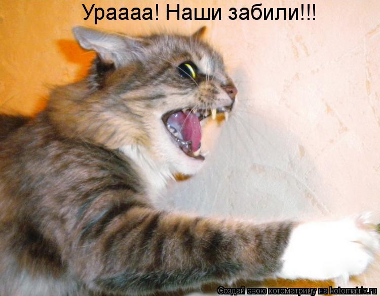 Котоматрица: Ураааа! Наши забили!!!