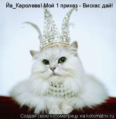 Котоматрица: Йа_Каролева! Мой 1 приказ - Вискас дай!