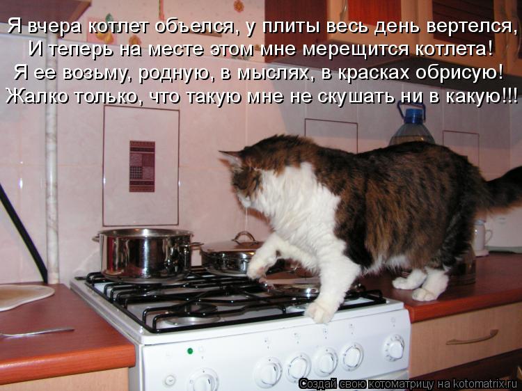 Котоматрица: Я вчера котлет объелся, у плиты весь день вертелся, И теперь на месте этом мне мерещится котлета! Я ее возьму, родную, в мыслях, в красках обри