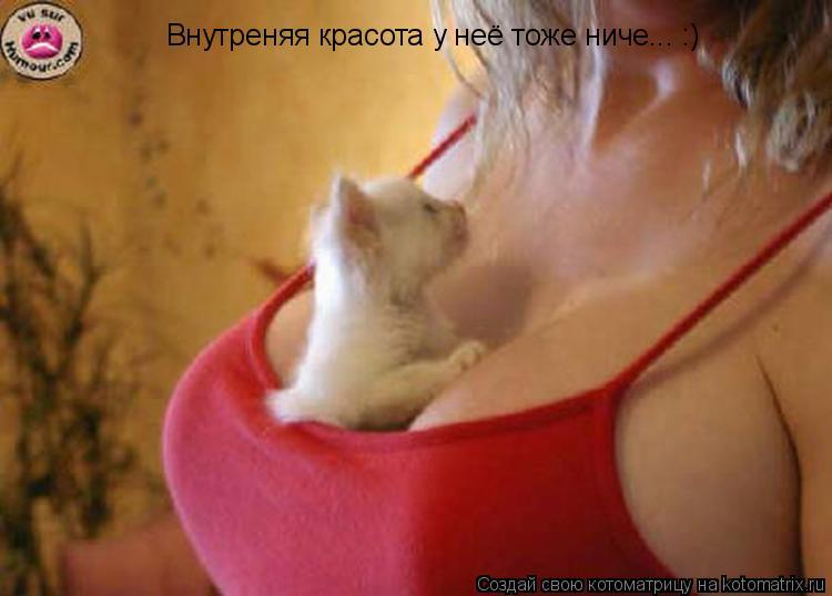 Котоматрица: Внутреняя красота у неё тоже ниче... :)