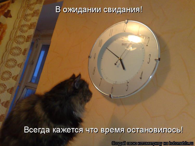 Котоматрица: В ожидании свидания! Всегда кажется что время остановилось!