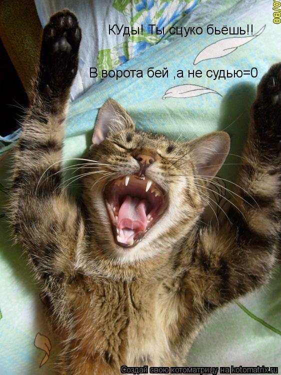 Котоматрица: КУды! Ты сцуко бьёшь!! В ворота бей ,а не судью=0