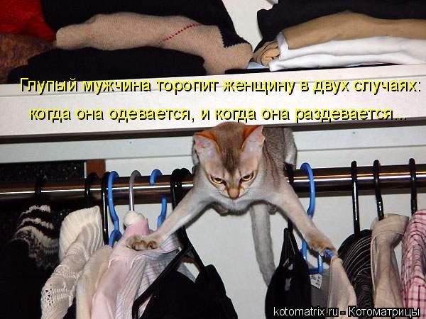 Котоматрица: Глупый мужчина торопит женщину в двух случаях: когда она одевается, и когда она раздевается...