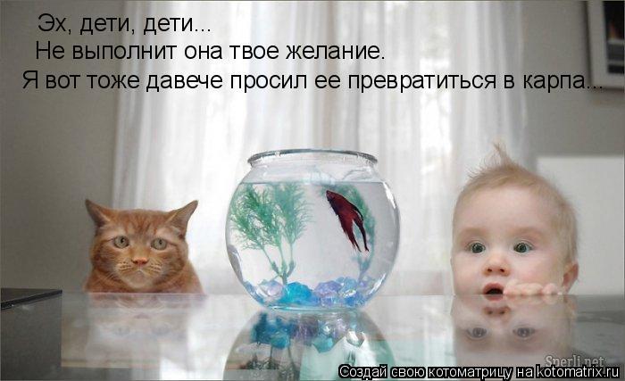 Котоматрица: Эх, дети, дети... Не выполнит она твое желание. Я вот тоже давече просил ее превратиться в карпа...