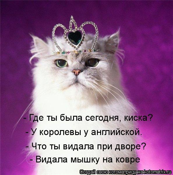 Котоматрица: - Где ты была сегодня, киска?  - У королевы у английской.  - Что ты видала при дворе?  - Видала мышку на ковре