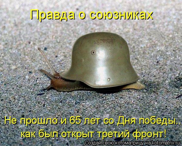 Котоматрица: как был открыт третий фронт! Не прошло и 65 лет со Дня победы... Правда о союзниках