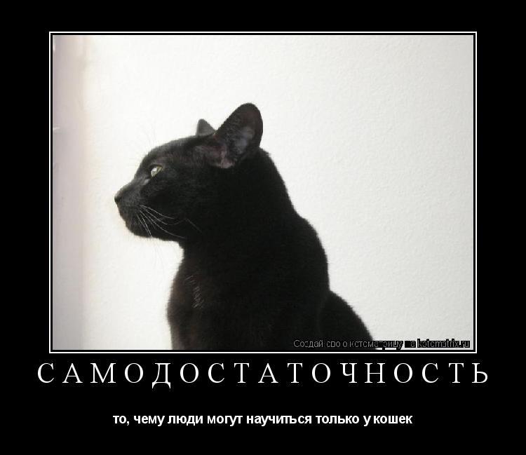 Котоматрица: САМОДОСТАТОЧНОСТЬ то, чему люди могут научиться только у кошек