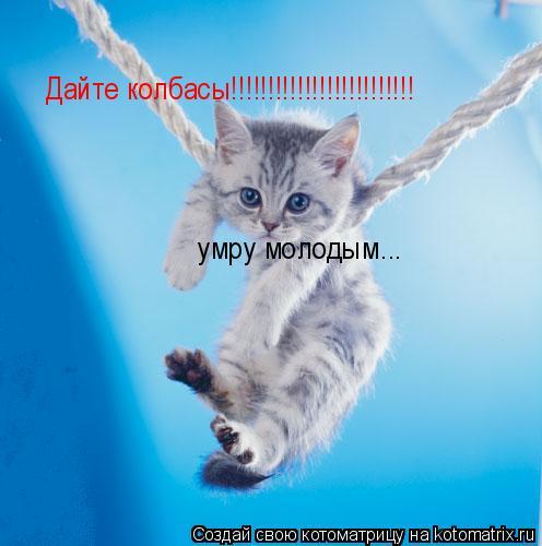 Котоматрица: Дайте колбасы!!!!!!!!!!!!!!!!!!!!!!!!! умру молодым...