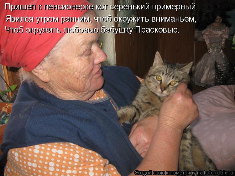 Котоматрица: Пришел к пенсионерке кот серенький примерный. Явился утром ранним, чтоб окружить вниманьем, Чтоб окружить любовью бабушку Прасковью.