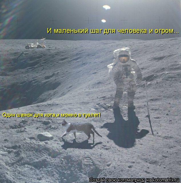 Котоматрица: И маленький шаг для человека и огром... Один шажок для кота,и можно в туалет! Один шажок для кота,и можно в туалет!