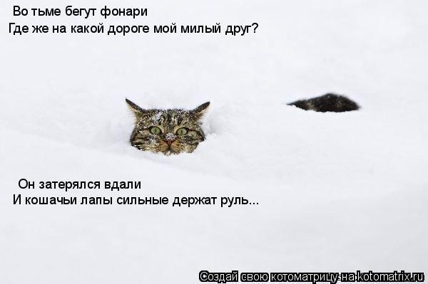Котоматрица: Во тьме бегут фонари Где же на какой дороге мой милый друг? Он затерялся вдали И кошачьи лапы сильные держат руль...