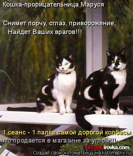 Котоматрица: Кошка-прорицательница Маруся Снимет порчу, сглаз, приворожение, Найдет Ваших врагов!!! что продается в магазине за углом!!! 1 сеанс - 1 палка са