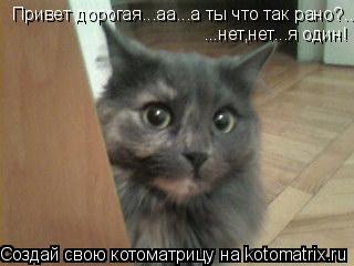 Котоматрица: Привет дорогая...аа...а ты что так рано?...нет,нет...я один! ...нет,нет...я один!