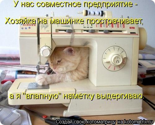 """Котоматрица: Хозяйка на машинке прострачивает, У нас совместное предприятие - а я """"влапную"""" намётку выдергиваю."""
