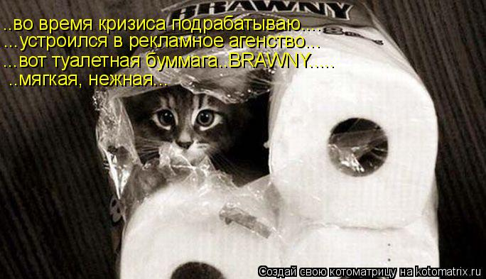 Котоматрица: ..во время кризиса подрабатываю.... ...устроился в рекламное агенство... ...вот туалетная буммага..BRAWNY..... ..мягкая, нежная...