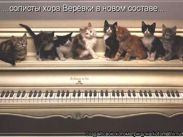 Котоматрица: ...солисты хора Верёвки в новом составе...