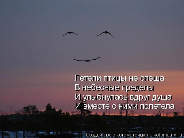 Котоматрица: В небесные пределы И улыбнулась вдруг душа И вместе с ними полетела Летели птицы не спеша