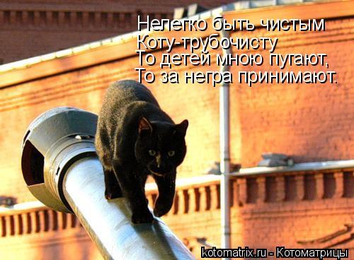 Котоматрица: Коту-трубочисту Нелегко быть чистым То детей мною пугают, То за негра принимают.
