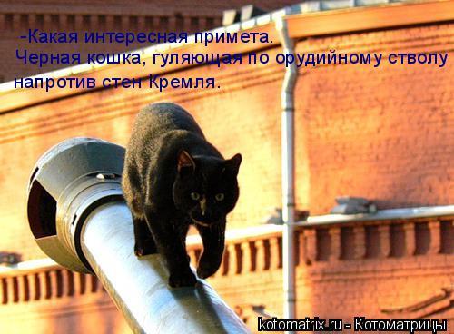 Котоматрица: -Какая интересная примета. Черная кошка, гуляющая по орудийному стволу  напротив стен Кремля.