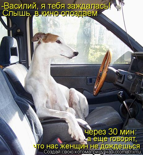 Котоматрица: -Василий, я тебя заждалась!  Слышь, в кино опоздаем через 30 мин: а еще говорят,  что нас женщин не дождешься