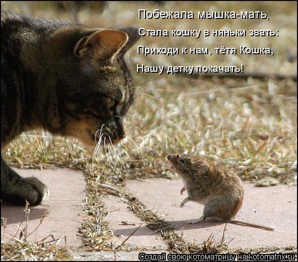 Котоматрица: Стала кошку в няньки звать:  Приходи к нам, тётя Кошка,   Нашу детку покачать! Побежала мышка-мать,