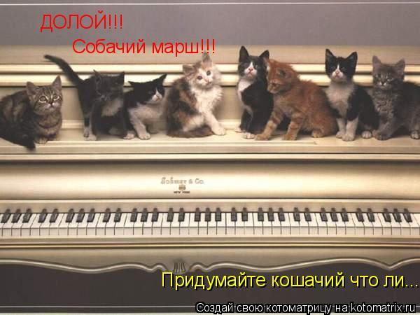 Котоматрица: ДОЛОЙ!!! Собачий марш!!! Придумайте кошачий что ли....